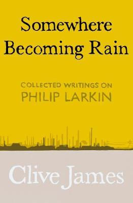 Somewhere Becoming Rain by