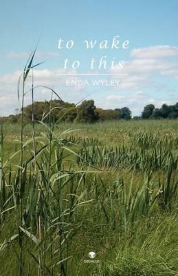To Wake to This by Enda Wyley