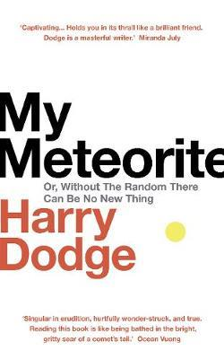 My Meteorite: Or, Without the Random There Can Be No New Thing by Harry Dodge