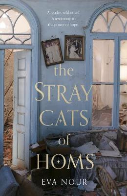 The Stray Cats of Homs (large paperback) by Eva Nour
