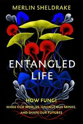 Entangled Life: How Fungi Make Our Worlds, Change Our Minds and Shape Our Future by