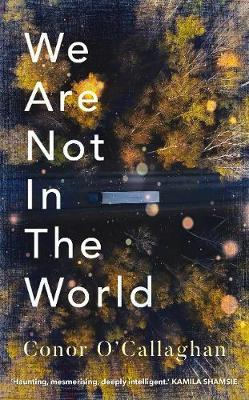We Are Not in the World by Conor O'Callaghan
